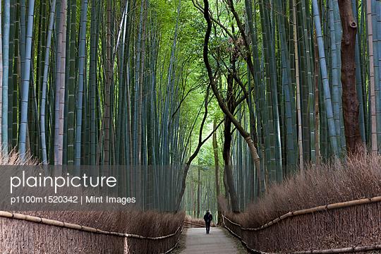 p1100m1520342 von Mint Images