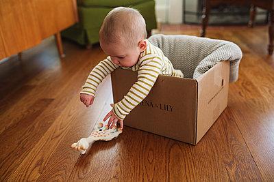 Baby im Karton - p1361m1225757 von Suzanne Gipson