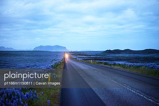 p1166m1150811 von Cavan Images