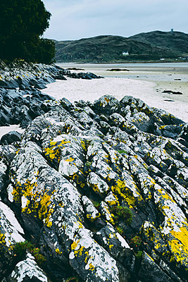 Rocks beach low tide Morar sand lichen picturesque - p609m2066466 by WALSH photography