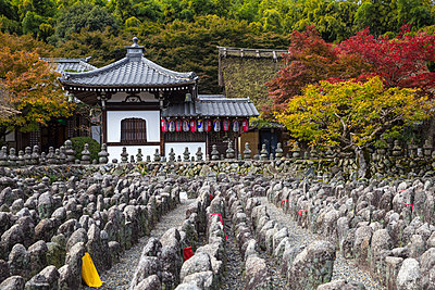 Japan, Kyoto, Arashiyama, Adashino Nenbutsu-Ji Temple, - Buddhist statues, representing the dead - p651m2006289 by Jane Sweeney