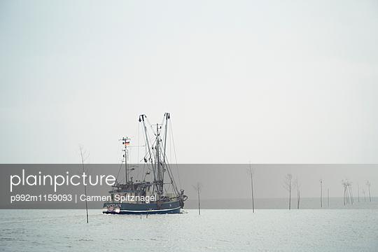 Fischkutter - p992m1159093 von Carmen Spitznagel