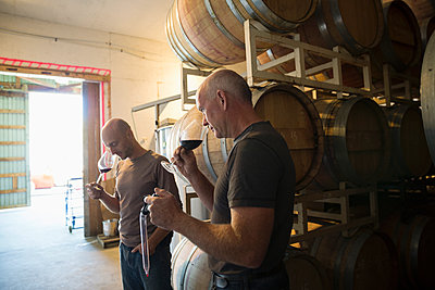 Vintners smelling and tasting red wine in winery barrel room - p1192m1183799 by Hero Images