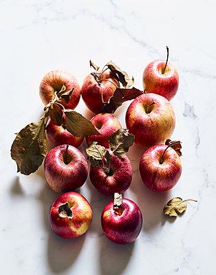 Äpfel - p1397m2054581 von David Prince