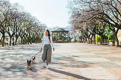 Spain, Andalusia, Jerez de la Frontera, Woman walking with two dogs on square - p300m2012694 by Kiko Jimenez