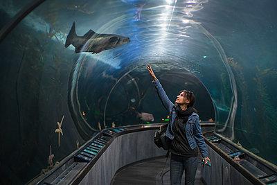Caucasian woman admiring shark in aquarium tunnel - p555m1412381 by Alberto Guglielmi