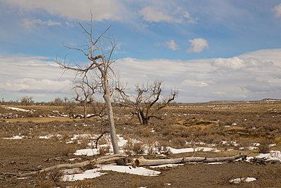Badlands - p1291m1116153 by Marcus Bastel