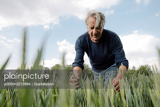 Wrinkled man looking at crop against cloudy sky in agricultural field - p300m2213984 by Gustafsson