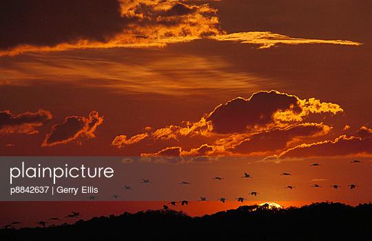 p8842637 von Gerry Ellis photography