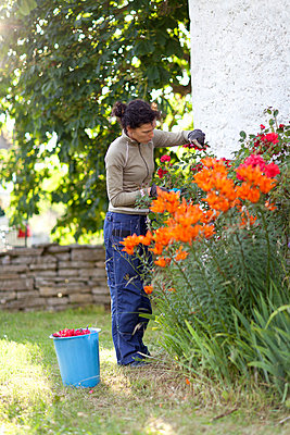 Woman working in garden - p312m800419f by Ulf Huett Nilsson