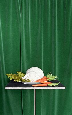 Kaninchen mit Salat - p4470252 von Anja Lubitz