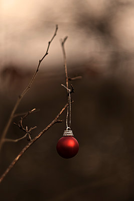Christmas decoration in a forest - p1228m2230865 by Benjamin Harte