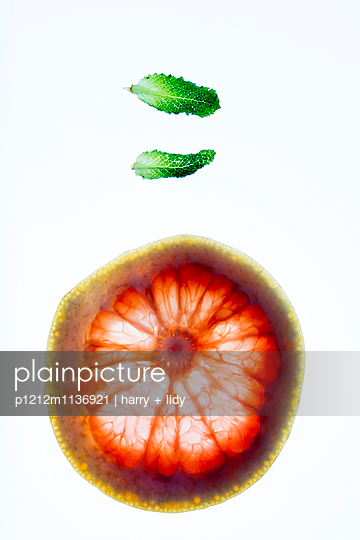 Zitrusfrucht mit Pfefferminzblätter - p1212m1136921 von harry + lidy