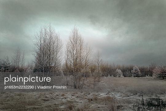 p1653m2232290 by Vladimir Proshin