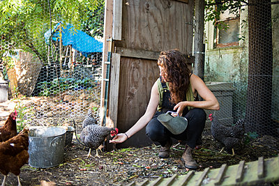 Woman feeding hens at poultry farm - p1166m1541840 by Cavan Social