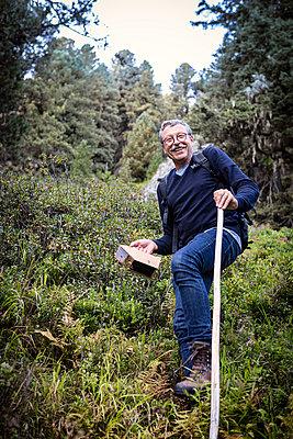 Heidelbeeren ernten - p1222m2126495 von Jérome Gerull