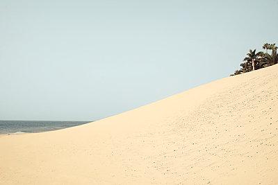 Düne in Morro Jable, Fuerteventura - p1162m973182 von Ralf Wilken