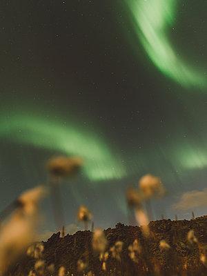 Northern Lights - p1507m2028288 by Emma Grann