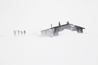 Mid distance of four skiers by a cottage in the storm - p1025m788877f by Nicklas Blom