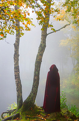 Ein Männlein steht im Walde - p992m882768 von Carmen Spitznagel