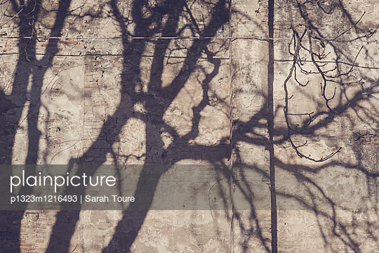 Schatten an der Wand - p1323m1216493 von Sarah Toure