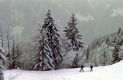 Schweizer Alpen - p2687388 von Andres Wertheim