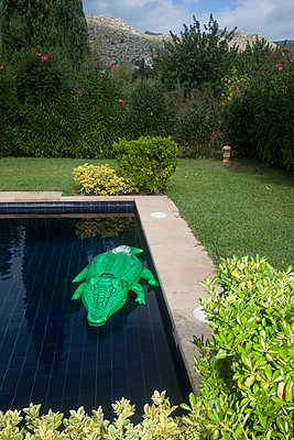 Garden with pool - p1514m2108976 by geraldinehaas