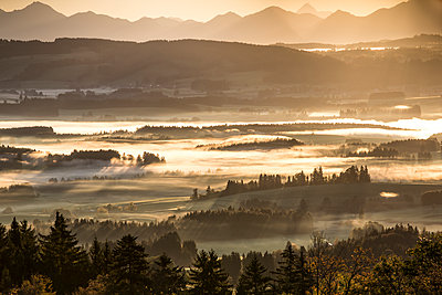 Germany, Bavaria, Allgaeu, sunrise - p300m2083187 by dl-photo