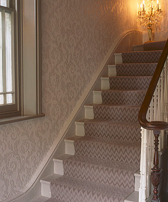neutral coloured carpeted staircase and matching decor - p349m695200 by Emma Lee