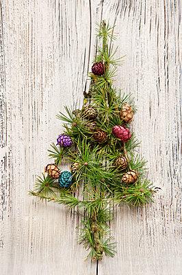 Christmastree made of larch twigs - p533m1556550 by Böhm Monika