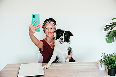 Female entrepreneur taking selfie with Border Collie while sitting against white wall at home office - p300m2251137 by Eva Blanco
