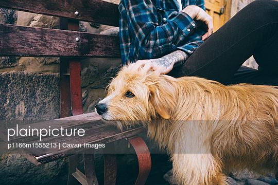 p1166m1555213 von Cavan Images