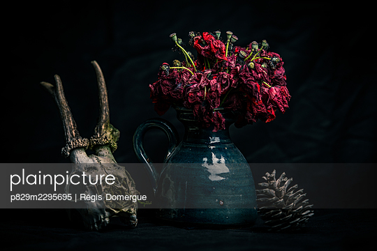 Deer skull and poppies - p829m2295695 by Régis Domergue