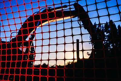 Backhoe at construction site seen through temporary red fencing at sunset - p343m1485417 by Ron Koeberer