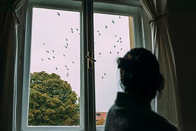 Zugvögel - p1317m1149836 von teryoshi