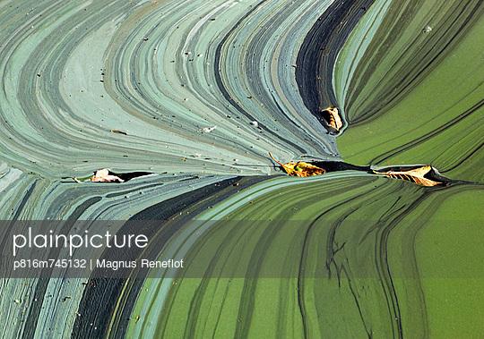 p816m745132 von Magnus Reneflot