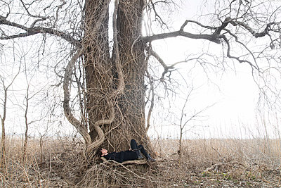 Woman Lying in Weathered Tree - p1262m1082800 by Maryanne Gobble