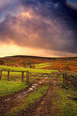 Yorkshire, England - p4426781f by Design Pics