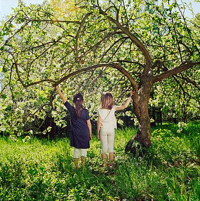 Best friends - p9510040 by Caterina Sansone