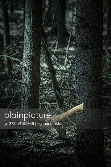 Die Axt im Wald - p1275m2185946 von cgimanufaktur