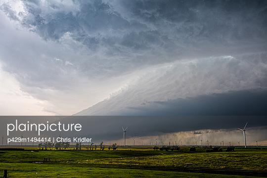 p429m1494414 von Chris Kridler