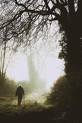 Alte Frau mit Gehstock geht im Herbst spazieren - p1057m2228698 von Stephen Shepherd