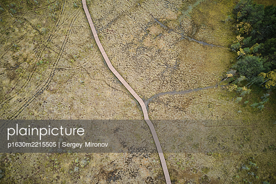 Aerial view of the wooden trail through the swamp. - p1630m2215505 by Sergey Mironov