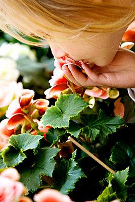 A little girl with a flower Sweden. - p31220835f by Juliana Wiklund
