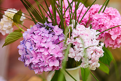A bunch of fresh flowers - p300m2024057 by gpointstudio
