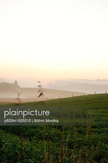 Morgennebel im Alpenvorland - p533m1525210 von Böhm Monika