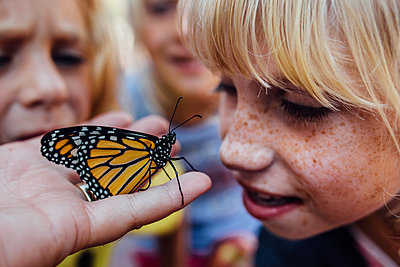 Young girl get up close look at monarch butterfly - p1166m2189782 by Cavan Images