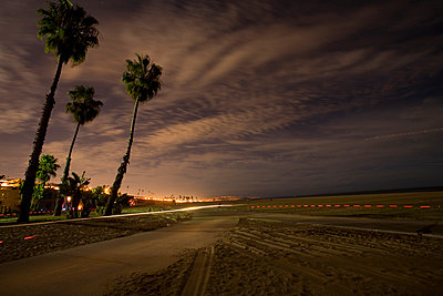 Palm trees and path near ocean - p555m1301666 by Tom Paiva Photography
