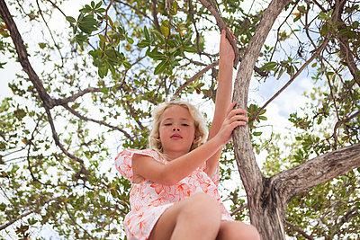 Blondes Mädchen sitzt im Baum - p045m2007859 von Jasmin Sander