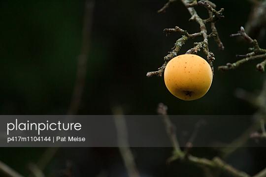 Apfel - p417m1104144 von Pat Meise